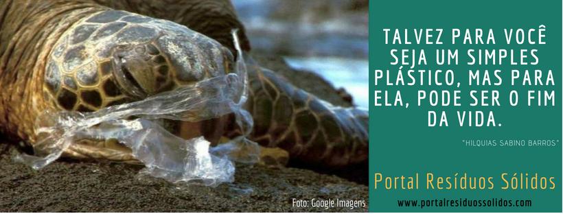 Morte de animais marinho devido a ingestão de plásticos.