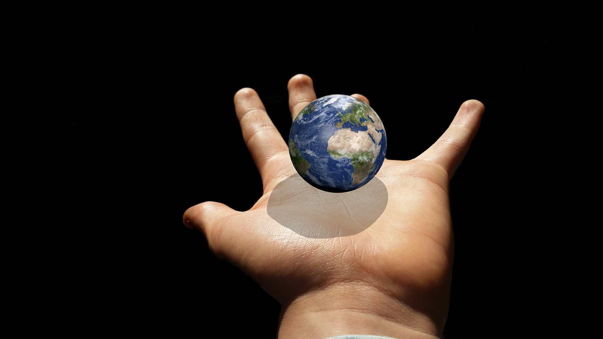 CEADI Planeta Vivo apresenta resultado de conferência regional do  Meio Ambiente