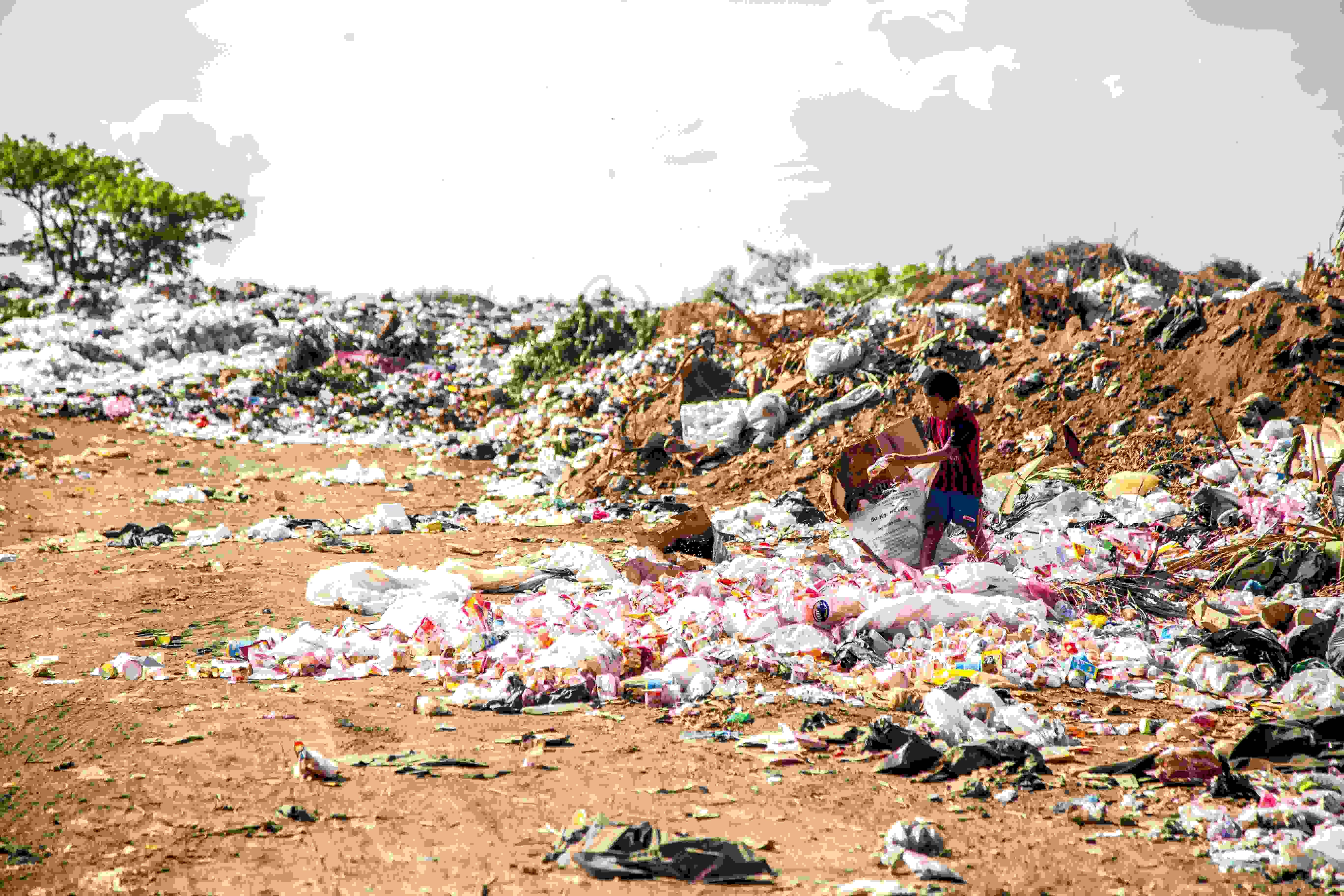 Read more about the article Gravimetria estimada dos resíduos sólidos da cidade de LAGAMAR-MG