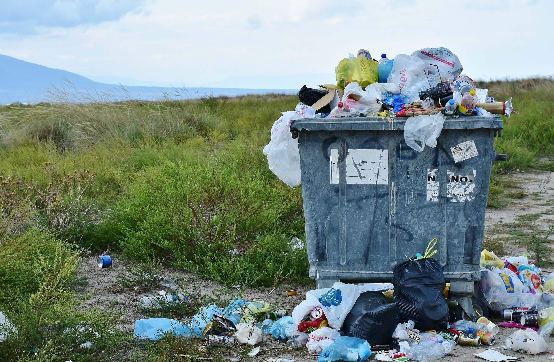 Webinário – Curso de Elaboração de Planos de Gerenciamento de Resíduos Sólidos